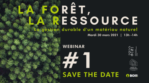 webinar La forêt, la ressource la gestion durable d'un matériau naturel
