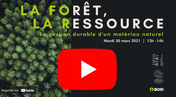Bouton Youtube